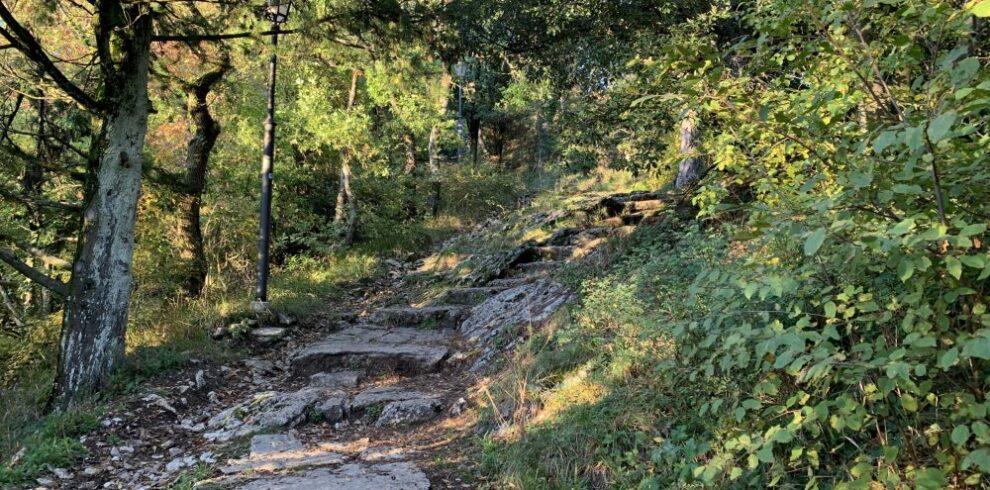 trekking-rupe